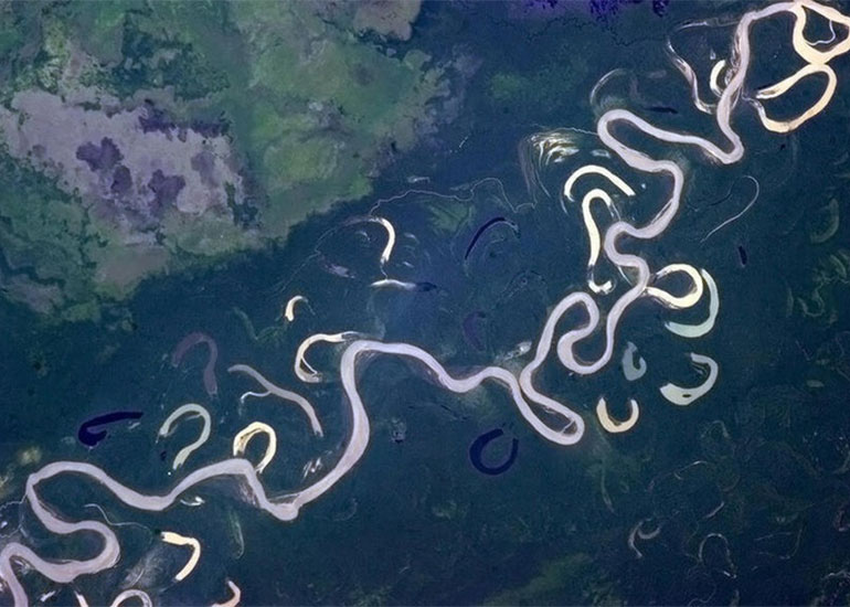 Satellite view of a river with remnants of past channels.